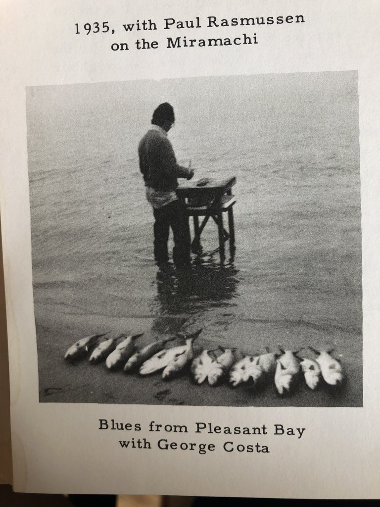 catching blue fish in pleasant bay 1935