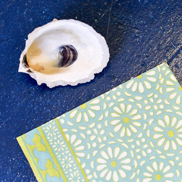 decoupage oyster shell diy kit in turquoise design